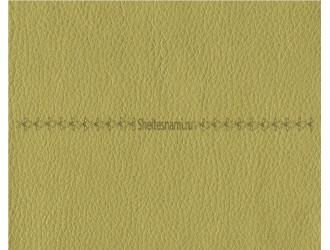 Кожзам (экокожа) Светло-зеленый